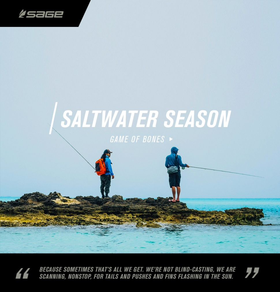 saltseason